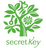 Secret Key HOT Deal