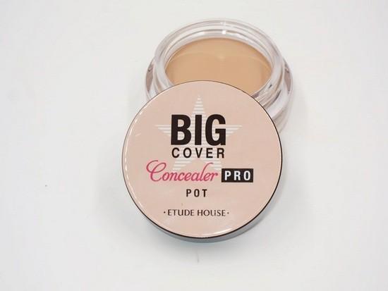 Che Khuyết Điểm Hoàn Hảo Etude House Big Cover Pot Concealer Pro