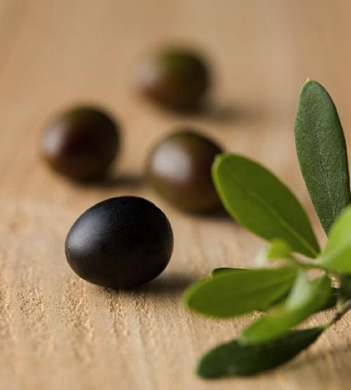 Sữa Rửa Mặt Dưỡng Ẩm Sâu Innisfree Olive Real Cleansing Foam 150ml