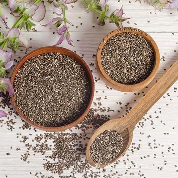 Bộ Dưỡng Ẩm Da Và Chống Lão Hoá Cơ Bản The Face Shop Basic Chia Seed Set