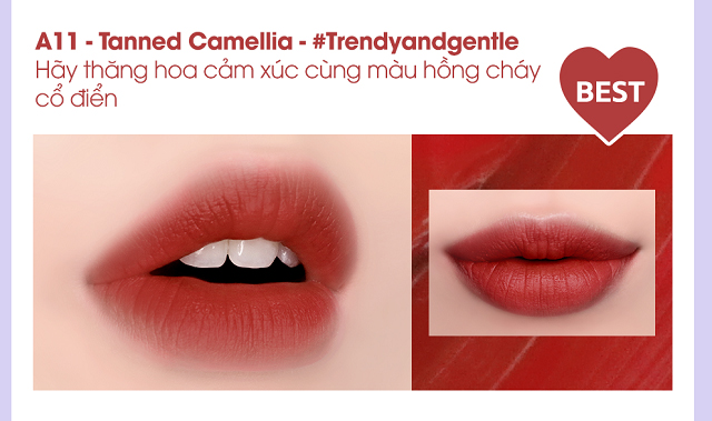 Màu Tanned Camellia