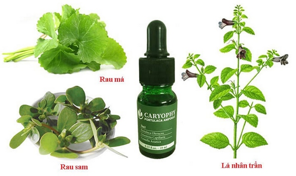 Review Tinh Chất Trị Mụn Caryophy Portulaca Ampoule