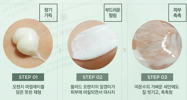 The Face Shop Chia Seed Fresh Cleansing Foam