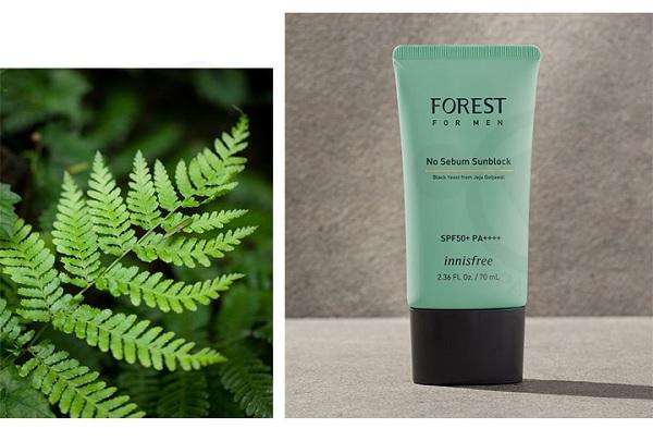 Kem Chống Nắng Dành Cho Nam Innisfree Forest For Men No Sebum Sunblock SPF50+ PA+++