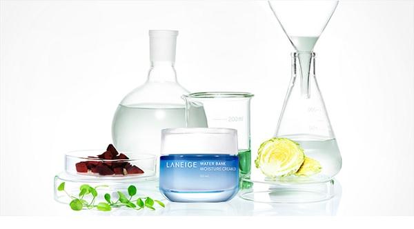 Thành phần Kem Dưỡng Ẩm Chuyên Sâu Laneige Water Bank Moisture Cream EX 50ml