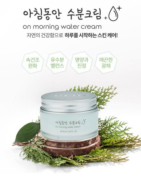 Kem Dưỡng Cấp Ẩm Nhanh Chóng Cho Da Vào Buổi Sáng Onallday On Morning Water Cream 50ml
